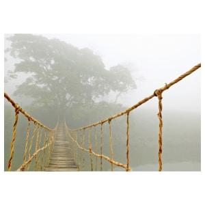 loopbaanadvies - hangbrug - een nieuwe richting of lastige route