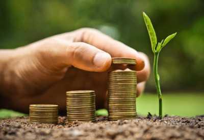 geldstapels_groei_plantje_1024x707